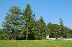 Landscape of Donau park in Vienna, Austria. Landscape of Donau city park in Vienna, Austria, at summer sunny day Royalty Free Stock Image