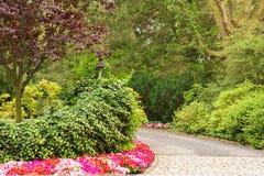 Landscape driveway Stock Photos