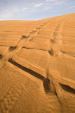 Landscape of Dubai desert. Stock Photography