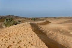 Landscape of Dubai Desert. While on Safari royalty free stock photos