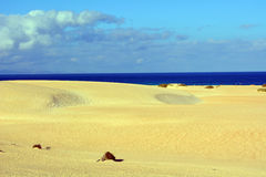 Landscape Dunes of Corralejo, Fuerteventura, Canary Islands, Spain Royalty Free Stock Photos