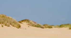 Landscape in the dunes with grass Stock Photography