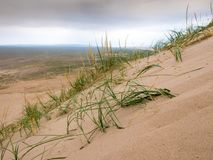 Landscape with dunes in Mongolia desert of Gobi. Landscape with dunes in Mongolia Gobi desert Royalty Free Stock Photo