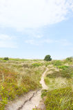 Landscape with dunes Royalty Free Stock Photo