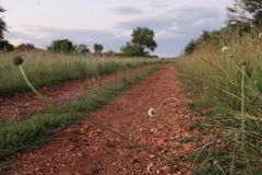 Landscape at dusk Royalty Free Stock Images