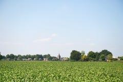 Landscape with Dutch village Stock Image