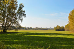 Landscape early autumn. Glade with yellow grass and leaves on the background of autumn birch grove in the distance field and villa stock photos