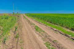 Landscape with an earth road agricultural fields in central Ukraine Stock Photo