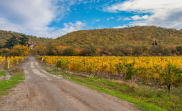 Landscape with earth road leading to remote settlement near Alushta city at fall season, Crimean peninsula Royalty Free Stock Photos
