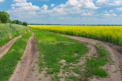 Landscape with earth roads on the edge of agricultural field Stock Photo
