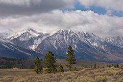 Landscape Eastern Sierra Royalty Free Stock Photo