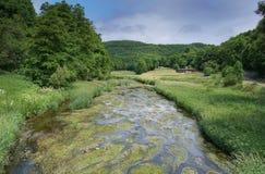 Creek, Landscape of Eifel, Germany Stock Photos