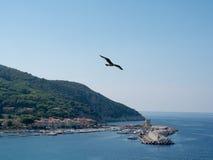 Landscape of Elba Island Tuscany Italy Stock Images