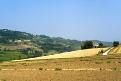 Landscape in Emilia Romagna (Italy) at summer Stock Photo
