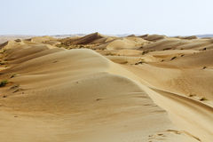 Landscape of Empty Quarter, Rub al Khali Desert Royalty Free Stock Photos