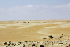 Landscape of Empty Quarter, Rub al Khali Desert Royalty Free Stock Images