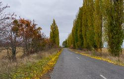 Empty road at cloudy autumnal day in Sumskaya oblast, Ukraine Stock Photos