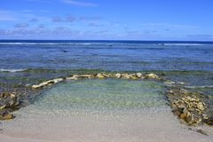 Empty rock pool on a coral reef in Rarotonga Cook Islands Royalty Free Stock Photos