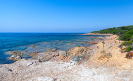 Landscape with empty wild beach, Corsica Royalty Free Stock Photography