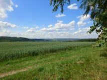Landscape2 royaltyfri fotografi