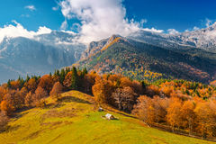 Landscape with the end of fall and beginning of winter in mounta Stock Photos