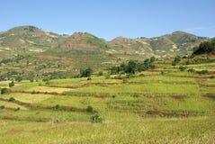 Landscape in Ethiopia Stock Image
