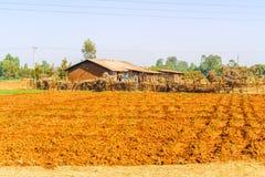 Landscape in Ethiopia near Bahir Dar Stock Image