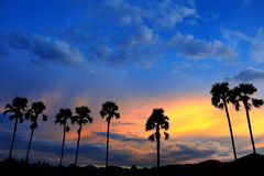 Landscape evening Royalty Free Stock Photography