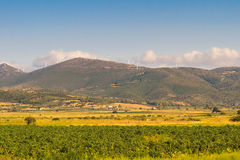 Landscape at Evia in Greece with a meadow and the wind turbines on top of the mountains. Stock Photography