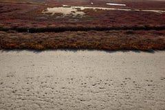 Landscape of Evros river in Greece. Stock Image