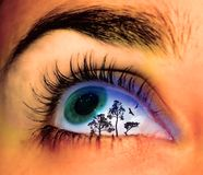 Landscape eye. Eye with tree landscape on it art illustration stock photography