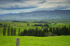 Landscape in Fairlie. Panoramic landscape Fairlie New Zealand South island Royalty Free Stock Photography