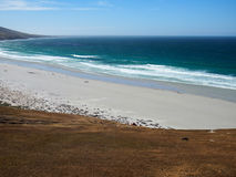 Landscape Falklands Malvinas. Beach landscape on the Falklands Malvinas Royalty Free Stock Photo