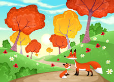 Landscape with family of foxes. royalty free stock photo