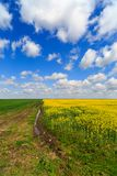 Landscape with a farm field Royalty Free Stock Photo