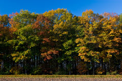 Landscape of a farmland with colorful autumn trees Royalty Free Stock Photos