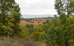 Landscape Farmland and Forest Robles Royalty Free Stock Image