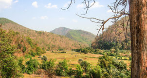 Landscape. Farmland and small hut in Maehong Thailand Stock Photo