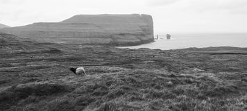 Landscape in the Faroe Islands, travel and tourism Stock Images