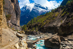 Landscape Fast Mountains River Hiking Himalayas.Beautiful View Wood Bridge End Summer Season Background.Green Threes. Cloudy Blue Sky Mountainous Rocks Royalty Free Stock Photo