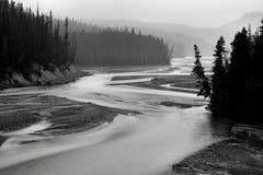 North Saskatchewan River. Landscape featuring the North Saskatchewan River, which flows through Banff National Park royalty free stock photography