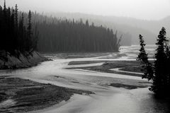 North Saskatchewan River. Landscape featuring the North Saskatchewan River, which flows through Banff National Park royalty free stock photos