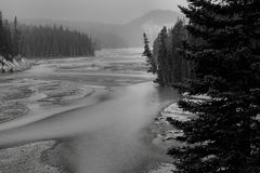 North Saskatchewan River. Landscape featuring the North Saskatchewan River, which flows through Banff National Park stock photo
