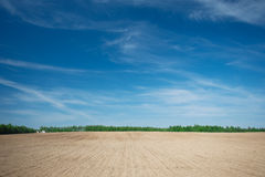 Landscape with a field Royalty Free Stock Photography