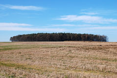 Landscape, field and blue sky. Landscape, meadow, field and blue sky Royalty Free Stock Photography