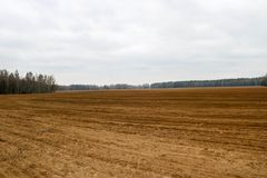 Landscape field, brown dug up land with beds, furrows for plowing, sowing grain on a background of forest and blue sky in spring. On a farm Stock Photography