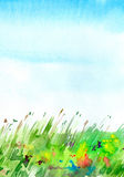Landscape with field and flowers. Summer image. Watercolor hand drawn illustration Stock Photography