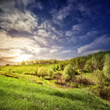 Landscape with a field of green grass and trees. Under a sunset sk Stock Image