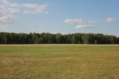 Landscape with field near forest 18277 Royalty Free Stock Photography