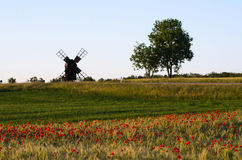 Landscape with a field of poppies and an old windmill Stock Photo